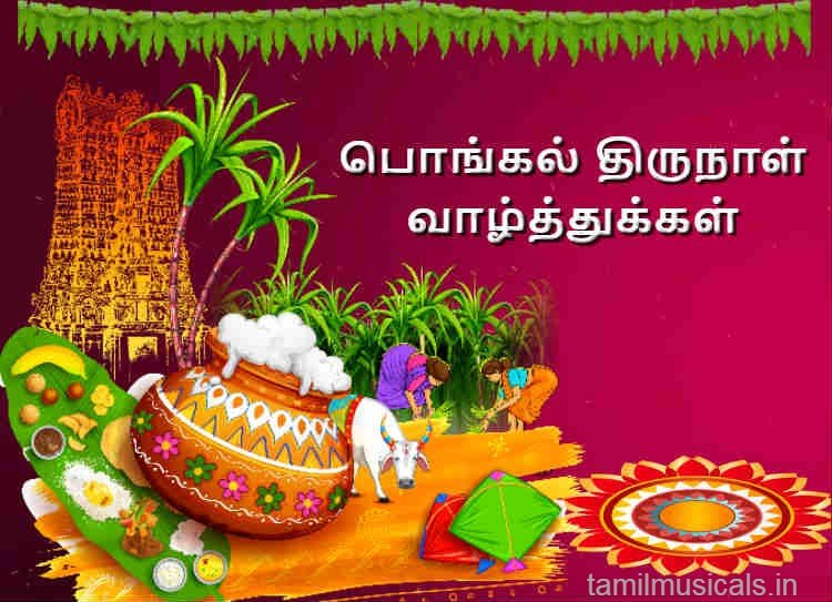 Pongal Greetings – Quotes, Wishes, Messages, Images, Cards, Greetings and GIFs